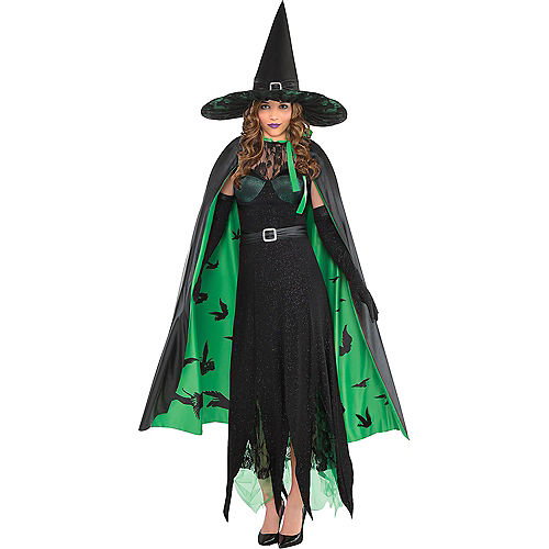 Women's Glinda & The Wicked Witch Couples Costumes - Wizard of Oz Image #2