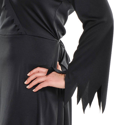 Adult Classic Witch Costume Plus Size Image #2