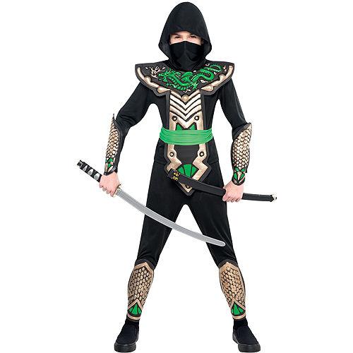 Boys Ninja Dragon Slayer Costume Image #1