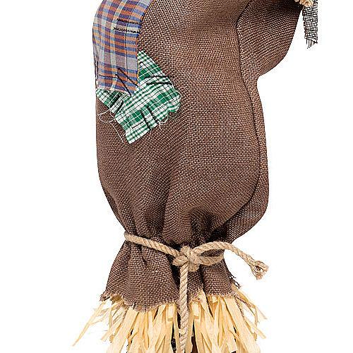 Adult Mr. Scarecrow Costume Image #3