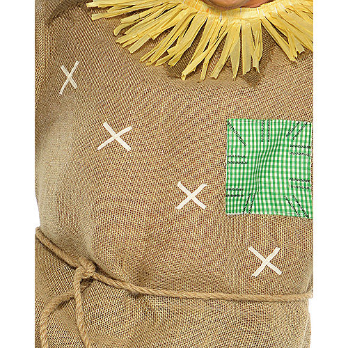 Adult Mr. Scarecrow Costume Plus Size Image #3