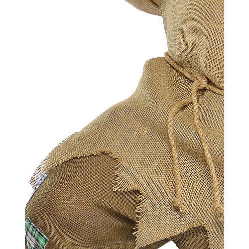 Adult Mr. Scarecrow Costume Plus Size Image #4