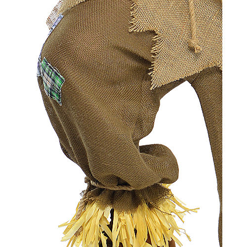 Adult Mr. Scarecrow Costume Plus Size Image #5