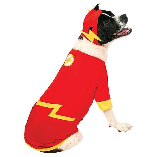 The Flash Dog Costume Image #1