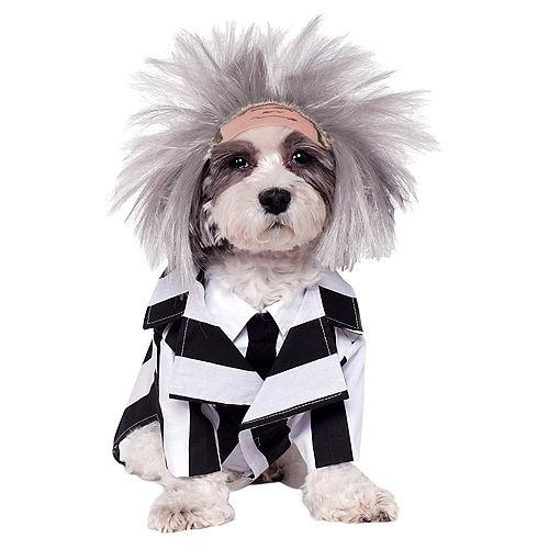 Beetlejuice Dog Costume Image #1