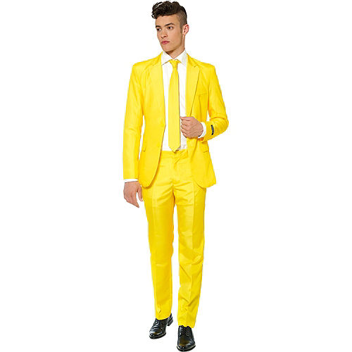 Adult Yellow Suit Image #1