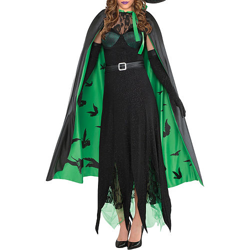Womens Wicked Witch Costume - The Wizard of Oz Image #3