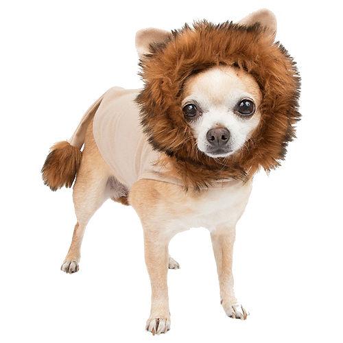 Lion Dog Costume Image #1