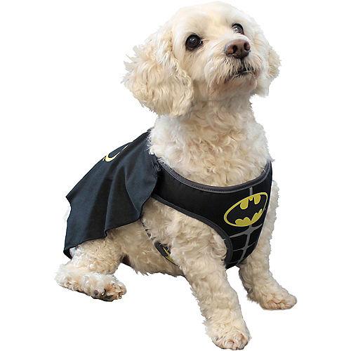 Batman Dog Costume - DC Comics Image #1