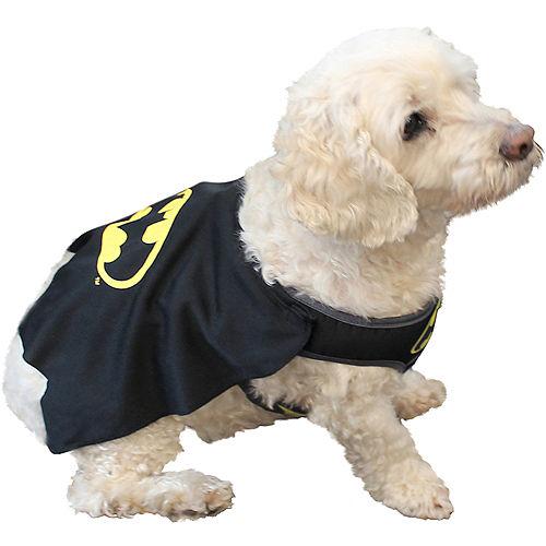 Batman Dog Costume - DC Comics Image #2