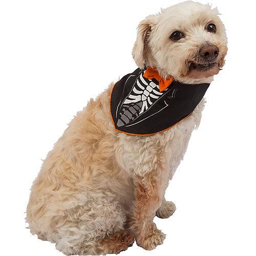 Black Dandy Skeleton Dog Bandana Image #1