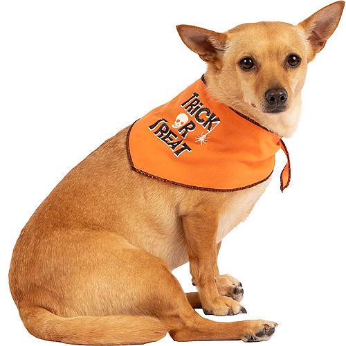 Orange Trick-or-Treat Dog Bandana Image #1