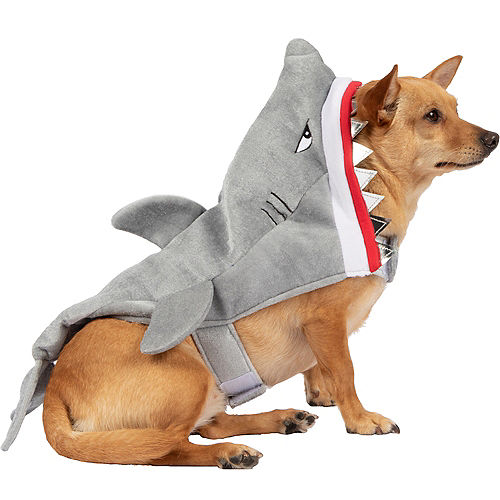 Grumpy Shark Dog Costume Image #1