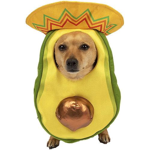 Avocado Sombrero Costume for Dogs Image #1