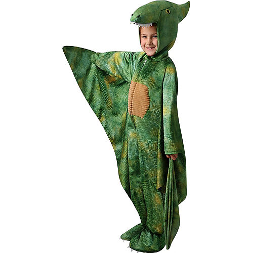 Child Pterodactyl Costume Image #1
