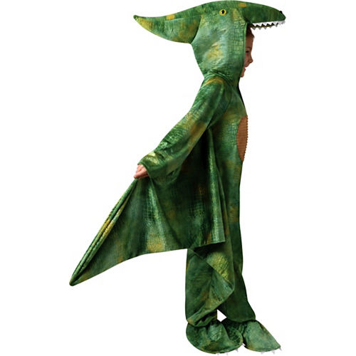 Child Pterodactyl Costume Image #3