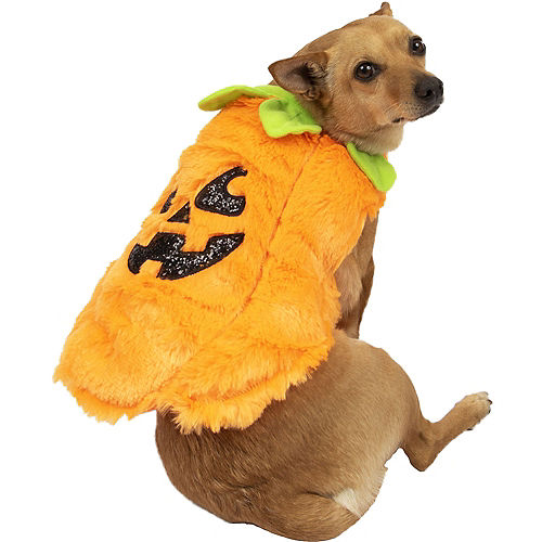 Fuzzy Halloween Pumpkin Costume for Dogs Image #1