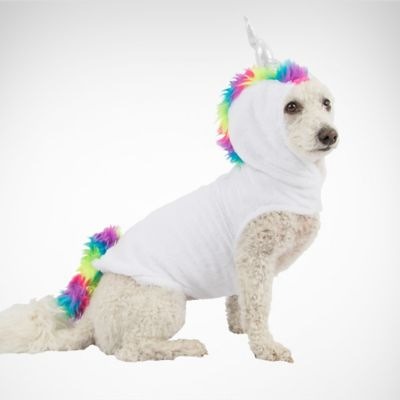 Pet & Dog Costumes | Party City